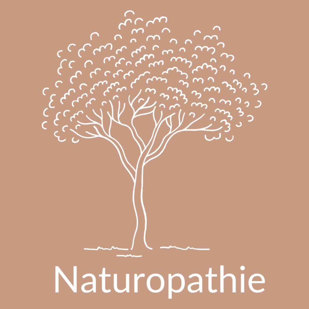 Naturopathie-Naturopathe-iridologie-medecine-douce-naturelle-Gabarret-Eauze-Cazaubon-Betbezer-Armagnac-e1604142339683.png